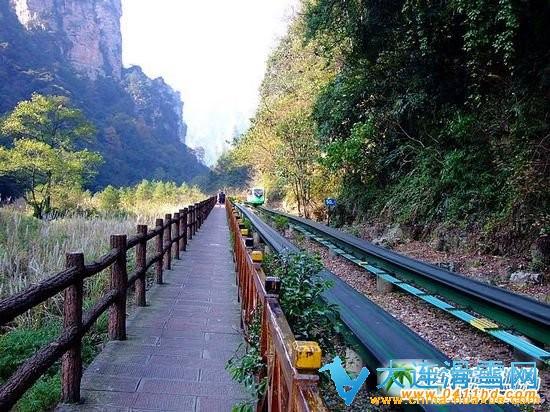 张家界风景区每年以春节,劳动节,暑假,国庆节为旅游